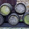 Von wegen Bierbauch: Bierhefe hält jung und macht schön