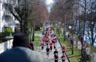 Trendsport: Halbmarathon