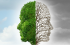 Schizophrenie – Diagnose oder Schicksal?