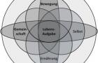 Die Methusalem-Strategie – Gesund mit 100, weil ein bisschen weise – Teil 4