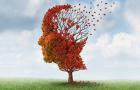 Alzheimer ist heute schon heilbar